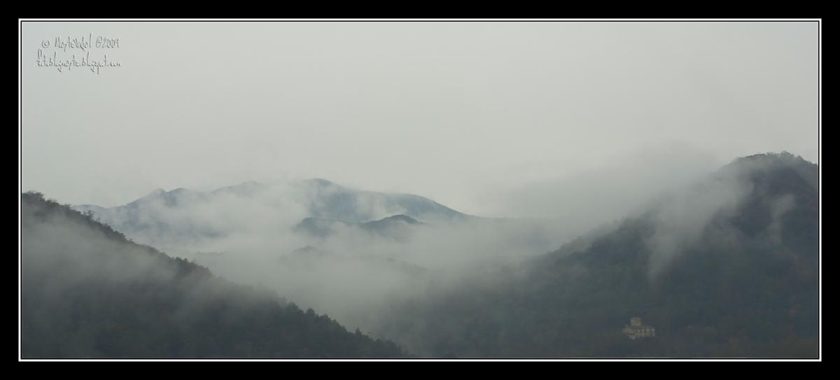 La niebla en la montaña