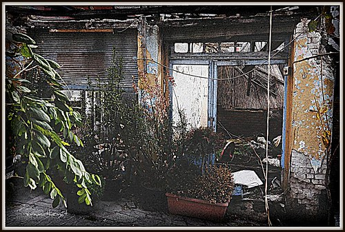 old-abandoned