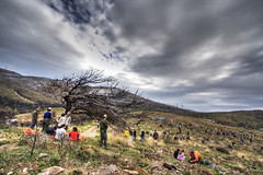 pendeli:  volunteer reforestation project (helen sotiriadis) Tags: mountain tree forest canon fire athens greece canon350d volunteer canonrebelxt hdr reforestation canonefs1022mmf3545usm photomatix pendeli toomanytribbles