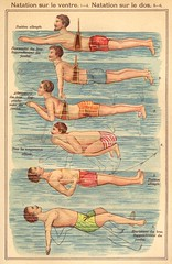 pl natation dos