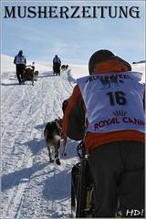 Alpen-Trail-2009