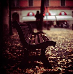 i want to be a leaf (andrenzo) Tags: autumn love film foglie composition photography one photo kodak no dream noone giallo dreams bologna medium format foglia intro conceptual kiev autunno rosso vc 60 160 concettuale panchina pellicola introcoso andrenzo andreacolombo introvertevent colomboandrea