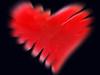 FROM ME TO YOU (Irene2727) Tags: friends red flickr heart valentine best fabulous tistheseason onblack blueribbonwinner aworkofart bej passionphotography fineartphotos golddragon mywinners abigfave nikond40 anawesomeshot ultimateshot visiongroup isawyoufirst amazingamateur betterthangood proudshopper theperfectphotographer goldstaraward rubyphotographer damniwishidtakenthat awardtree goldenart novavitanewlife flickrcinated absoluterouge thenewselectbest ingnisart newgoldenseal