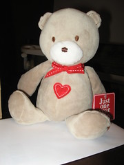 Valentines day 2009