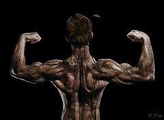 Strength (Josh Sommers) Tags: wood people tree muscle bark flex cracked ent musculature