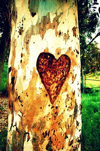 heart the tree