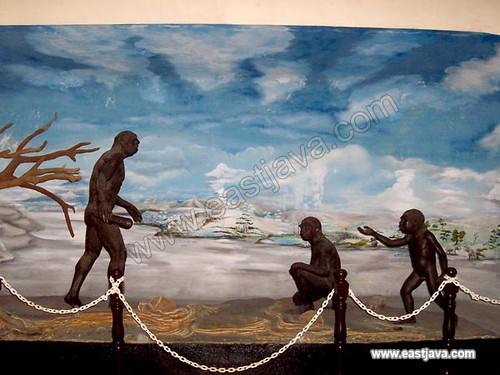 Trinil Museum - Ngawi
