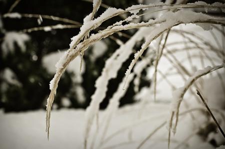 Snow_Storm-5