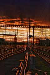 [フリー画像] [人工風景] [線路/鉄道] [夕日/夕焼け/夕暮れ] [スイス風景] [チューリッヒ]      [フリー素材]