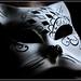 29º/ historia de canarias, el carnaval y mascaritas