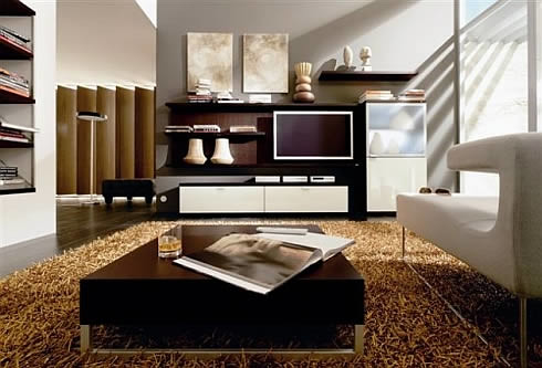 Contemporary Living Room Decoration, Contemporary Living Room, Living Room Design, Modern Living Room