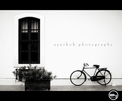 FRENCH WINDOW (ayashok photography) Tags: window yellow wall for nikon floor cycle 6th pondicherry frenchbuilding nikonstunninggallery nikond40 krishlikesit ayashok nikor55200mm simplyadoreyouwork