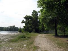 Parco Del Ticino (Fairy_Visions) Tags: fiume natura pavia parcodelticino fiumeticino bereguardo pontedellebarche