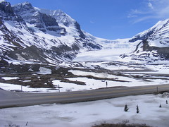 day7 156 (WrappersParadise) Tags: canada rockies alberta icefieldsparkway