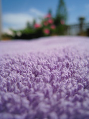 macro purple towel explore lilac galaxy guide thehitchhikersguidetothegalaxy douglasadams hitchhikers hhgttg towelday