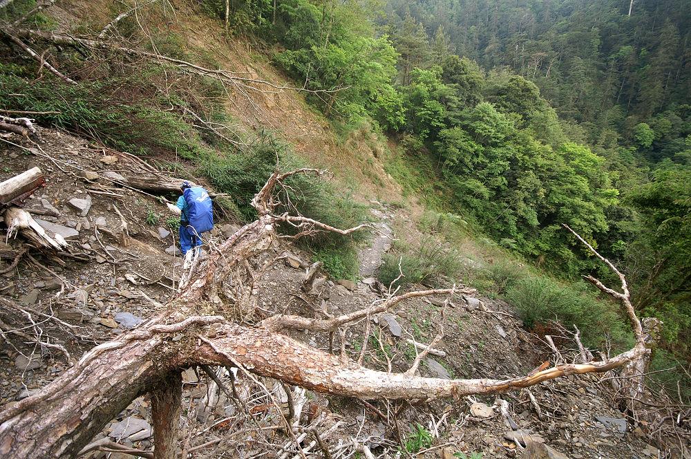 南湖大山day1-29 崩塌地