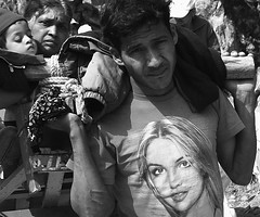 britney, my love (lightonmymind) Tags: blackandwhite bw delete10 delete9 delete5 delete2 delete6 delete7 candid labor delete8 delete3 delete delete4 hills sweat weightlifting load britney lifting