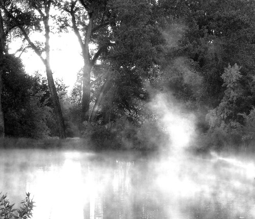Morning Lake Mist BW