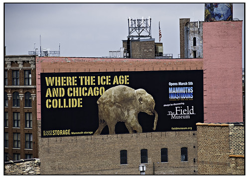 Chicago Ice Age