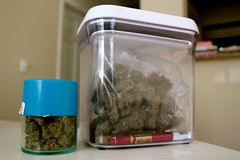 Gotta keep it fresh (C.u.p.c.a.k.e.) Tags: trees tree weed 420 fresh delicious pot greens marijuana maryjane medicinal stoner ganja dosha nugs greencrack swishers weedcontainer