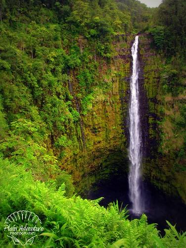 Number 16: Akaka Falls - Big Island