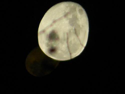 Luna con sombra 1 by Carlos Navarro C.