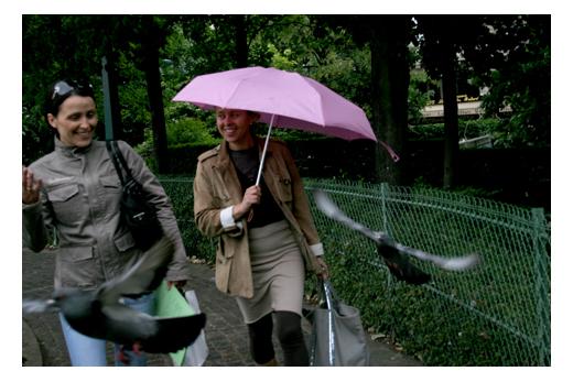 30_mai_parapluies_6679
