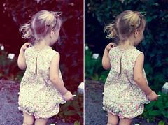 tint gardens (Le Fabuleux Destin d'Amélie) Tags: summer two baby girl vintage 50mm evening kid toddler child little pentax run clothes blonde pigtails rosegarden