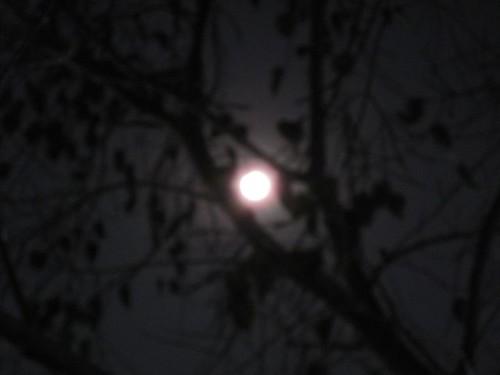 strange moon shot