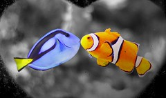 Finding Nemo deleted scene (San Diego Shooter) Tags: california wallpaper love nemo sandiego clownfish pixar valentines dory valentinesday desktopwallpaper findingnemo bluetang birchaquarium fishlove animalwallpaper sandiegowallpaper sandiegodesktopwallpaper