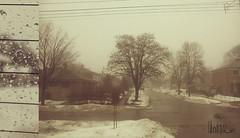 foggy weather (Unique xm) Tags: city landscape foggy raining    flickrsbest