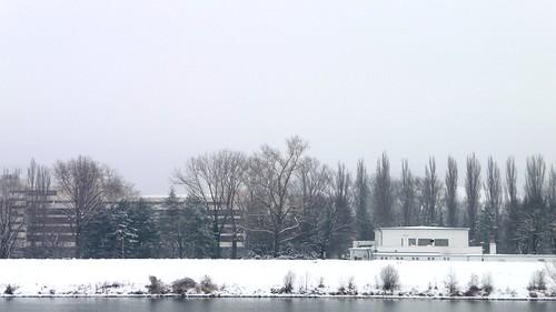 Winter 2008-2009