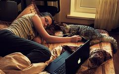 When it's snowing outside (sick panda) Tags: apple girl female analog cat silver 50mm bed hug sleep tabby olympus shorthair british f18 om2 macbook