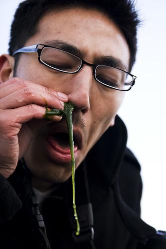 algae snot