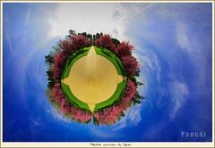 Sakura - Cherry Blossom 4 - little planet (Paucal) Tags: pink flowers colors de cherry little pentax blossom du fisheye da planet sakura parc japon 1017 sceaux planetoid cerisiers k10d