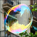 The City in the Soap Bubble