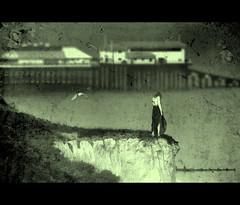 The Edge of Reason (digitalpsam) Tags: sea bw dark intense mood alone norfolk textures drama cromer sammatta