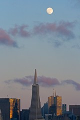 The Moon over the San Francisco skyline (Trond Strmme) Tags: sanfrancisco moon transamericapyramid sigma100300f4exdghsm ex100300f4