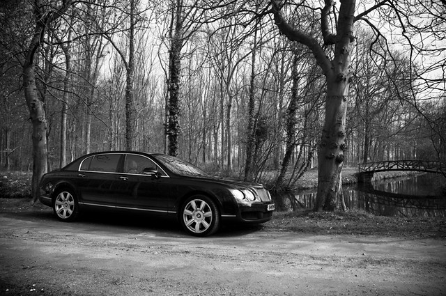 bridge trees blackandwhite forest river alone photoshoot style aloneinthewoods bentleycontinentalflyingspur
