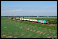NMBS2813+44600_Zhk_13062009 (Dennis Koster) Tags: portfolio uc trein traxx nmbs a16 2813 nvbs kijfhoek goederentrein zevenbergschenhoek unitcargo reeks28 44600esnkfhn 186205 opderails200909