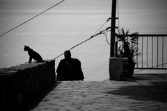 To Say Nothing of the Cat (Pensiero) Tags: sea blackandwhite m