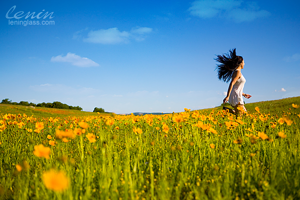 IMAGE: http://farm4.static.flickr.com/3325/4575066502_b7659d3f25_o.jpg