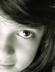 ♥♥♥شايف بعيني كيف حبك يجري بدمي (Maryam.Ibrahim) Tags: