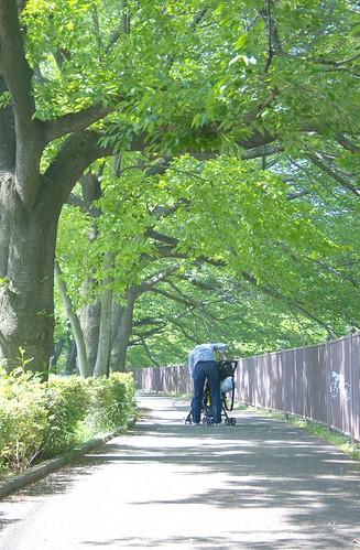 町田樹 画像31