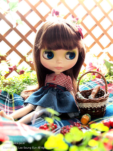 """Limited sale """"Picnic"""" (Sold out) by spring & summer."""