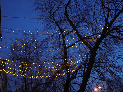fairy lights by lus.sienna