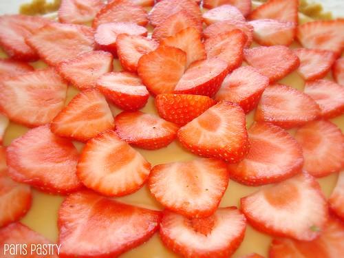 夏季草莓T