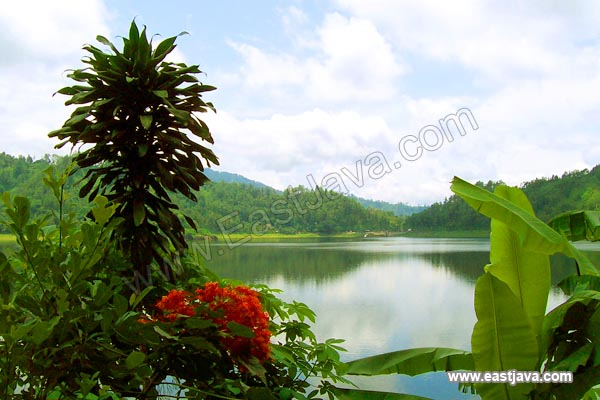 Ngebel Lake - Ponorogo