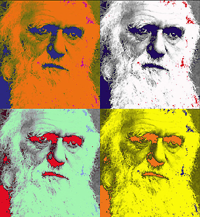 1103727-2-the-return-of-charles-darwin-via-pop