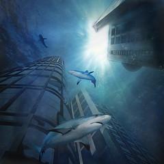 waterworld (2eyes_photos) Tags: photomanipulation nikon underwater textures outstandingshots flickrsbest aplusphoto bratanesque nikond300 goldstaraward atqueartificia lightiq